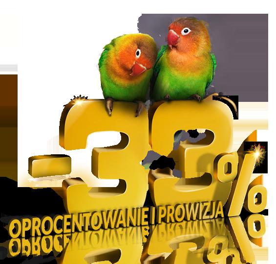 Pożyczka dla Duetów - Oprocentowanie -33%
